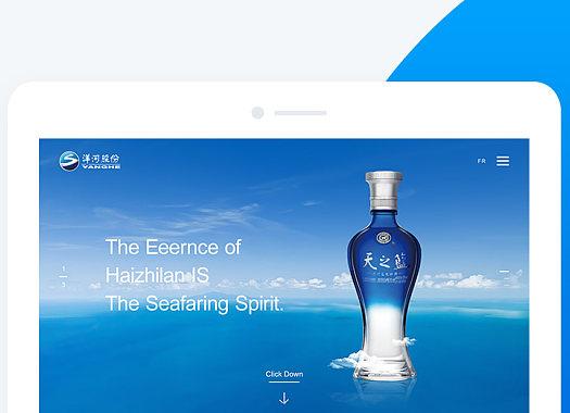 集团品牌网站视觉设计开发建设
