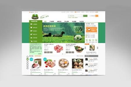 商城网站建设,商城网站开发,商城网页设计